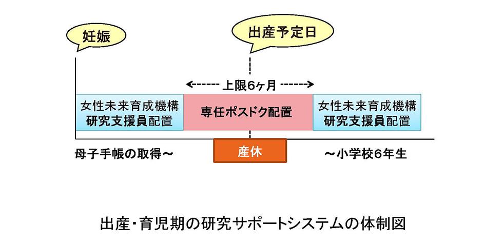 出産・育児期の研究サポートシステムの体制図